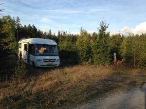 In het bos. Even off the road. Om het zware werkverkeer met bomen wel even de ruimte te geven.